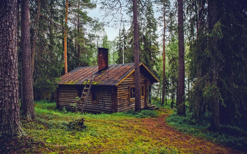 5 Important Tips for Living off the Grid